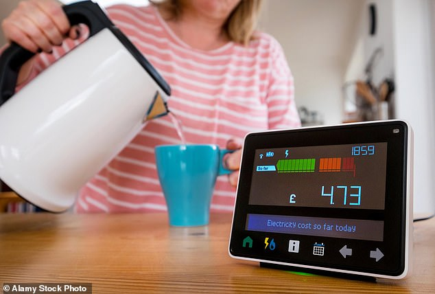 Daily Mail – Government scheme gives companies access to smart meter data
